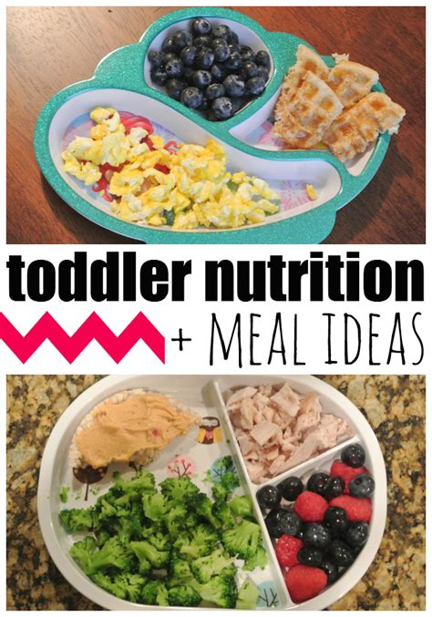 diet ideas for picky preschoolers picture 7