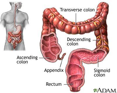 digestive bleeding picture 1