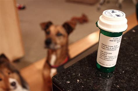 Herbal tranquilizer picture 1