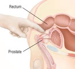 can i ejaculate from rubbig my prostate picture 4