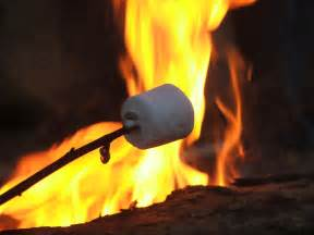 campfire marshmallows picture 2