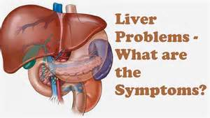 liver ailments and symptoms picture 2