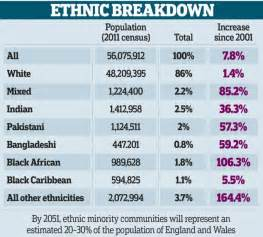 ethnic and minority aging picture 6