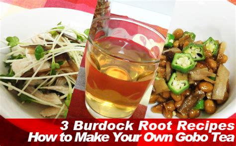 how to make burdock tea for garden use picture 3