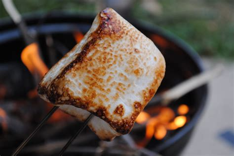 cooking marshmallows picture 6
