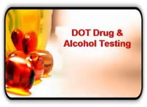 dot drug screen hoodia picture 2