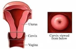 health exam female picture 11