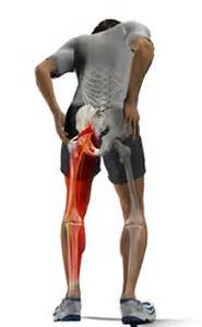 does tricor cause muscle pain in legs picture 28