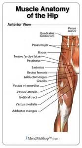 does tricor cause muscle pain in legs picture 17