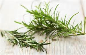 herbs for increasing blood flow picture 7