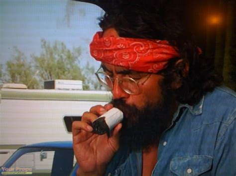 cheech and chong up in smoke pictures picture 9