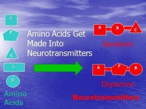 amino acids for pain and sleep picture 9