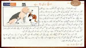 jagirdar a long story by urdu funda picture 1