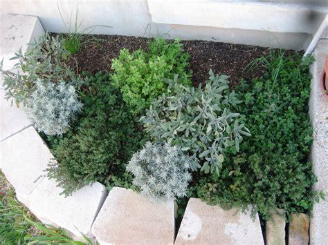 herbal garden picture 13