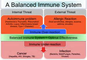 cfs is a th1 immune disease bacterial in picture 3