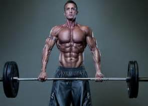 muscle size picture 5