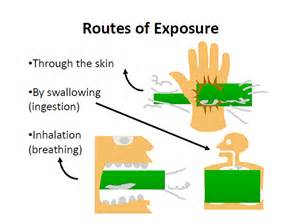toxic chemical exposure aging picture 3