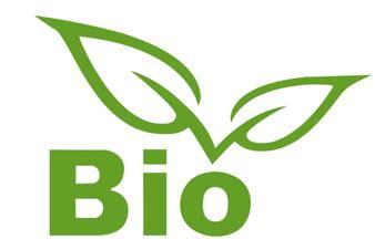 bio picture 5