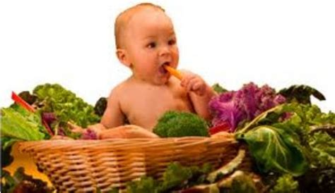 baby's diet picture 9