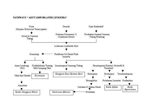askep leukemia akut picture 1