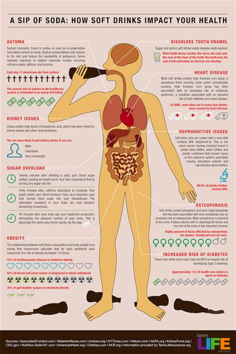 drinking alcohol with thyroid problems picture 5