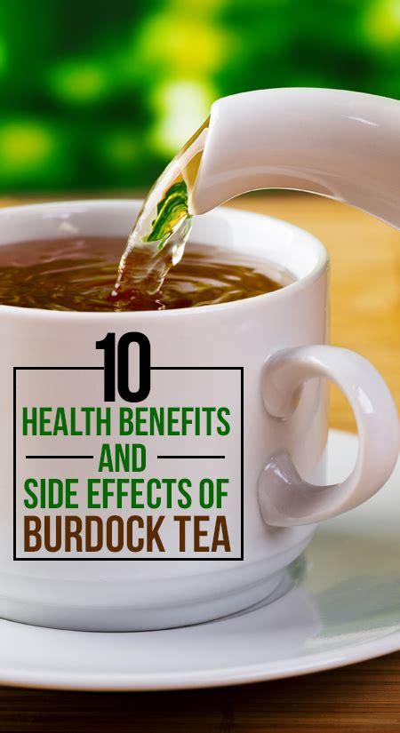 health benefits of burdock root tea picture 5