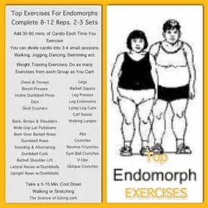 endomorph food for weight loss picture 2