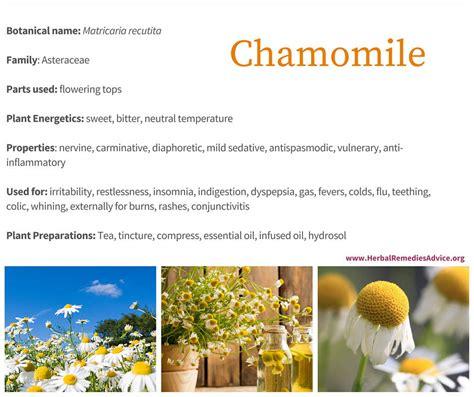 herbal remedies mrs pinkham works picture 6