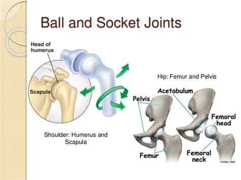 ball and socket joint parts picture 14