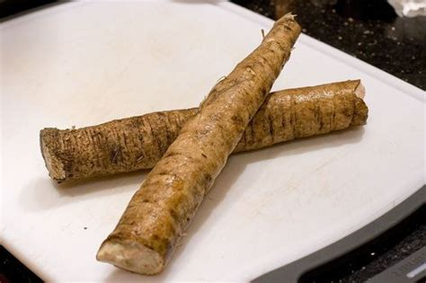 burdock root and cancer picture 5