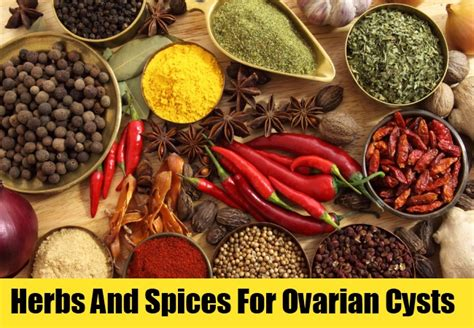 herbs that dissolve ovarian cysts picture 5