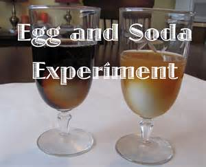 egg teeth soda project picture 11
