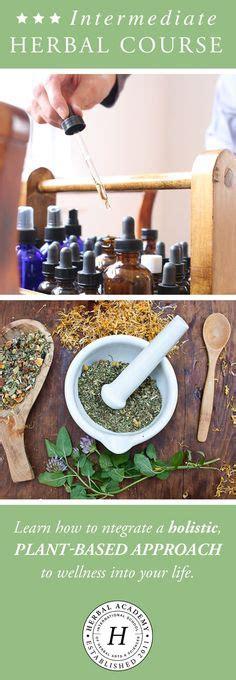 herbal healer academy scam picture 6