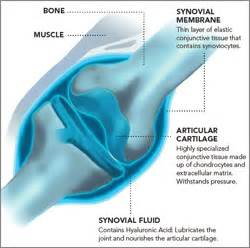 fluid joint picture 1