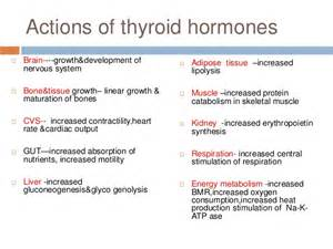 inactive thyroid picture 2