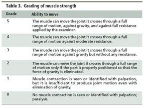 Muscle strength test picture 3