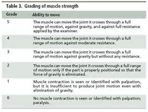 muscle strength test picture 10