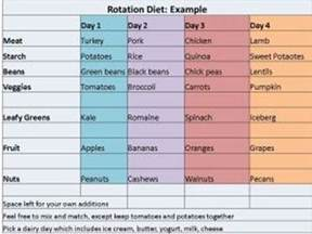allergy rotation diet picture 2