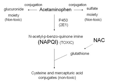 acute liver failure and tylenol picture 11