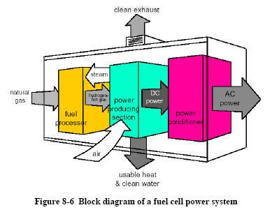power cell herbal picture 5