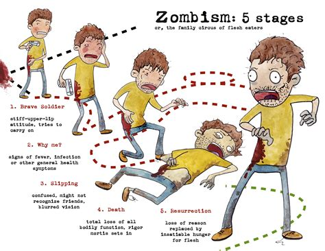 stages of the bacterial infection picture 11
