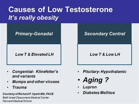 causes of low testosterone picture 3
