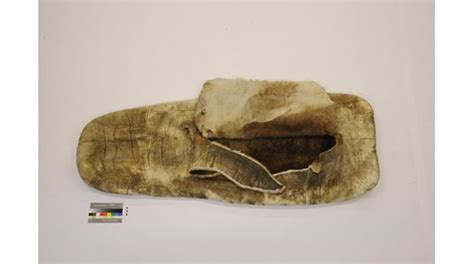 caribou skin picture 5