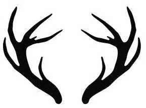 how to whiten deer antlers picture 3
