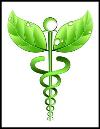 where to buy herb medicine in ohio picture 14