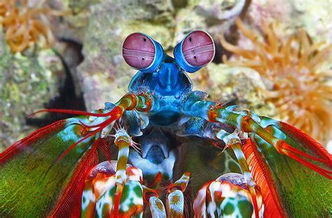 aquarium health picture 9