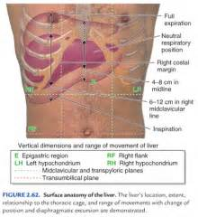 gastrointestinal disease picture 7