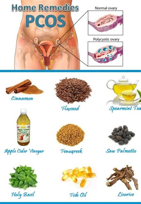 herbs to suppress ovaries picture 6