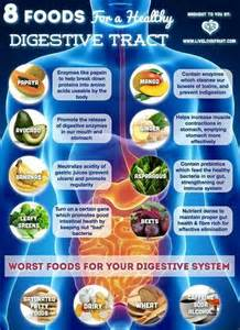 foods that aid in digestion picture 2