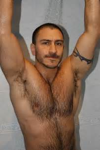 arab muscle bears picture 9